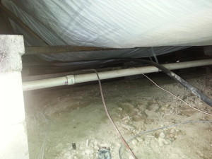 Chesterfield MI animal damage to insulation in crawlspace 2